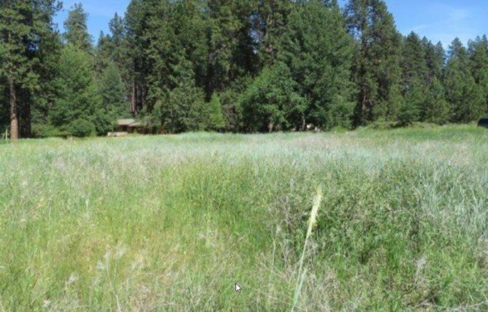 Farms and Ranches for Sale - APXN Property