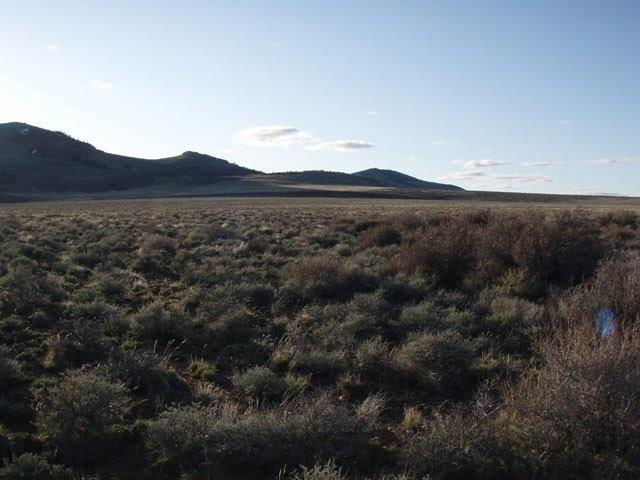 Land for Sale in Lake County, Oregon - APXN Property