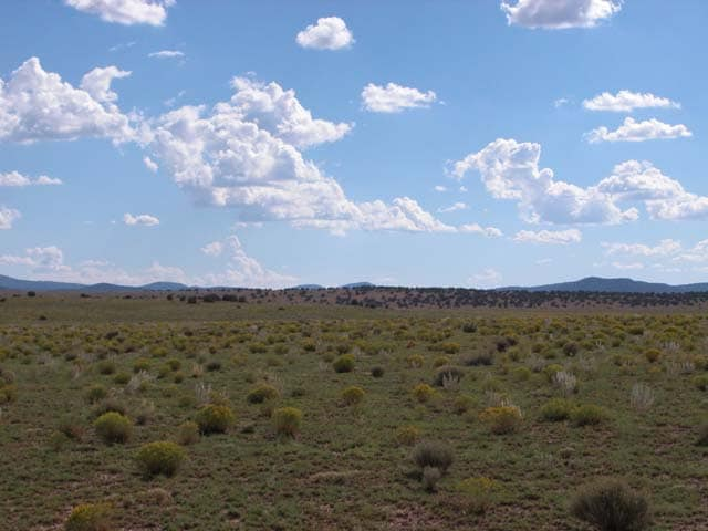 Raw land for sale available in Concho, AZ