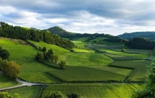 What Do I Need To Know Before Buying Land?