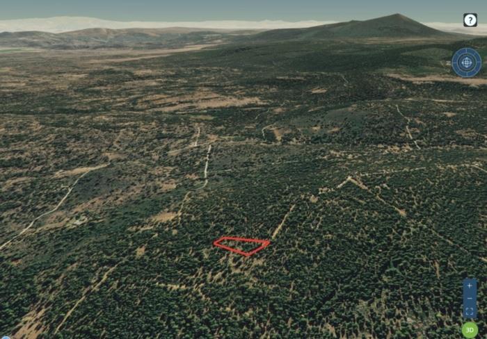 1.39 Acres Raw Maping Land Bonanza Oregon