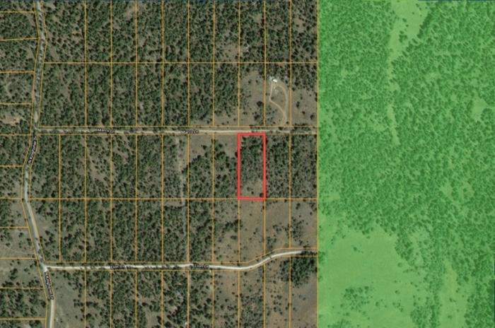 2.33 Acres, Cheap Forest Land in Bonanza Oregon