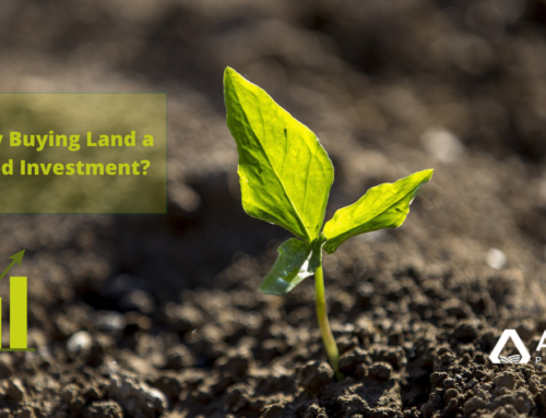 Why Buying Land a Good Investment in 2021?