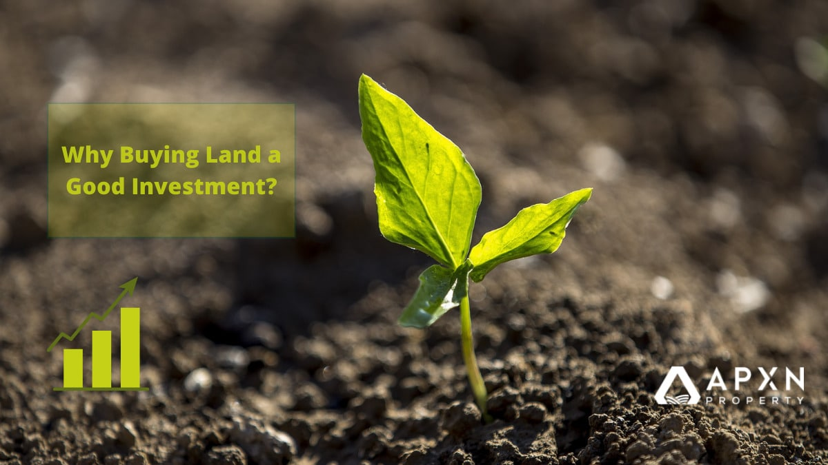 Why Buying Land a Good Investment?