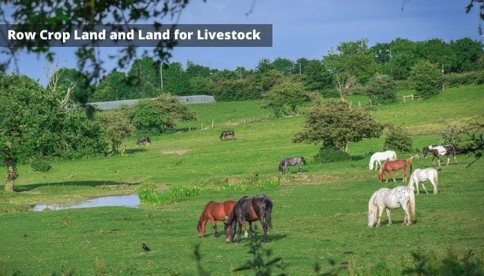 Row Crop Land and Land for Livestock