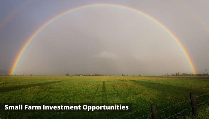 Small Farm Investment Opportunities